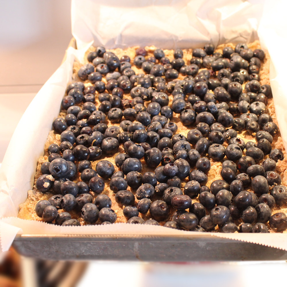 oatmeal-blueberry-squares